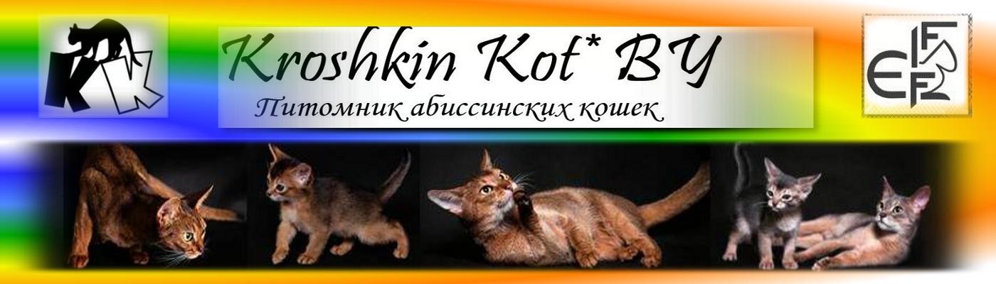 Kroshkin Kot